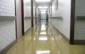 School Cleaning Bellmere, Vinyl Floor Cleaning North Brisbane, Corporate Cleaning Morayfield